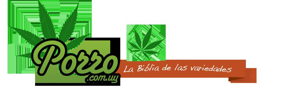 Porro Uruguay logo