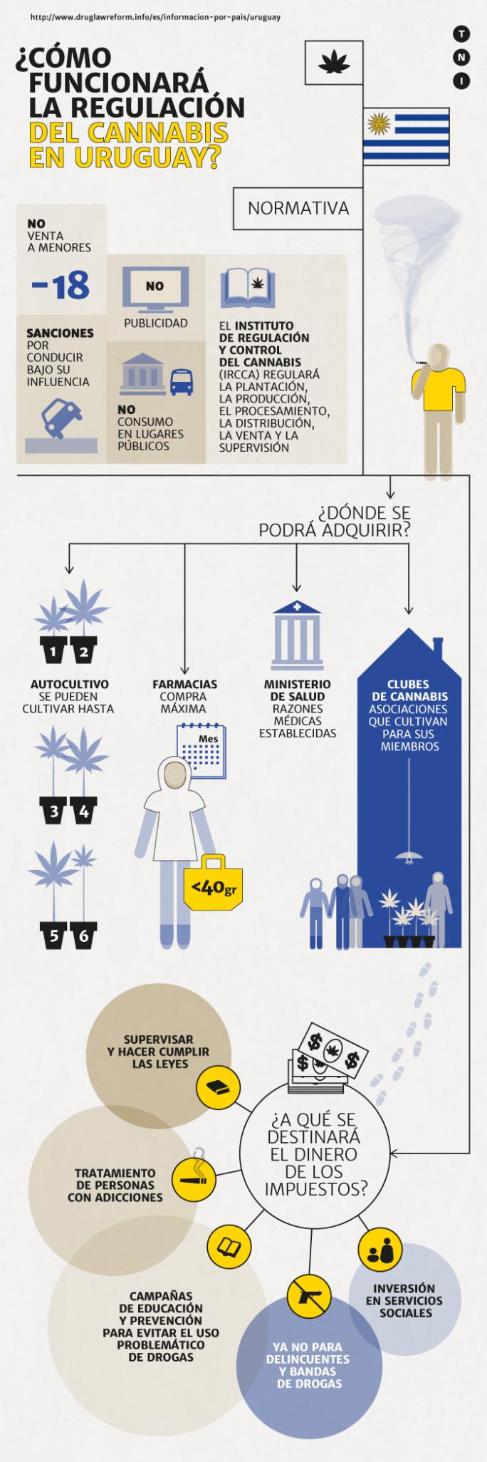 Como funcionará la regulación de cannabis en Uruguay?