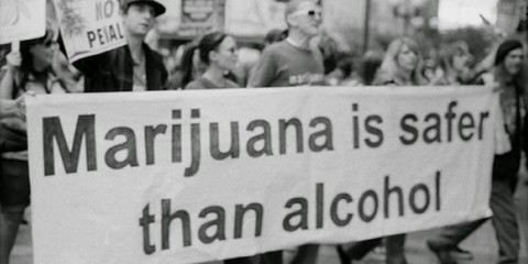 Marijuana-Safer-Alcohol-1024x678