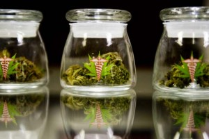 cannabis-medicinal71