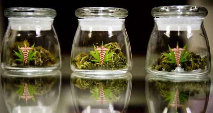 Finalmente en Uruguay los doctores se capacitan para el uso de cannabis medicinal