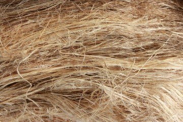 Raw-Hemp-Bark-Fibre-RHF-