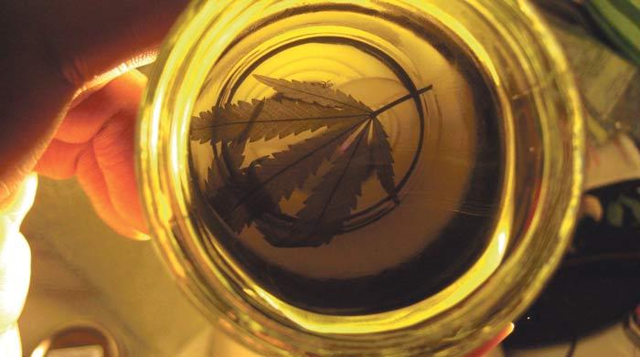 10 usos que se le puede dar al aceite de cannabis