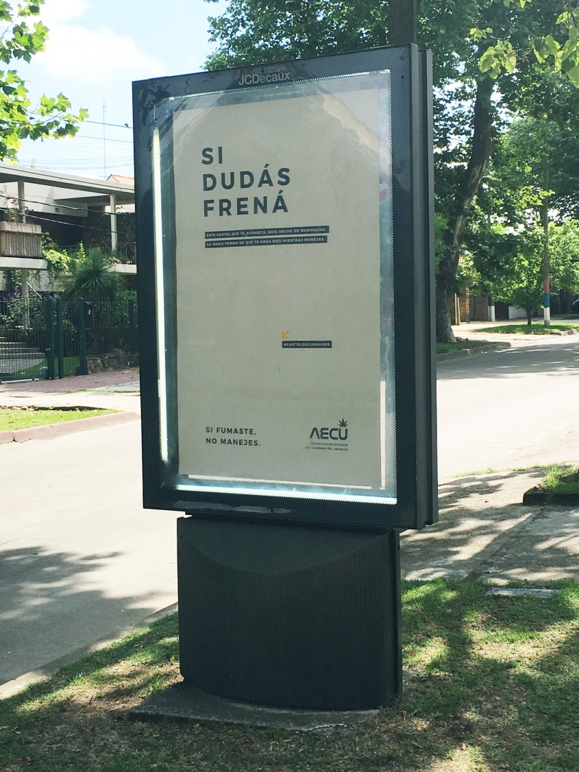 Posters de cáñamo previenen sobre el uso de la droga al manejar