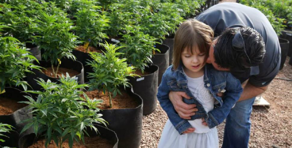 Marihuana Medicinal para las Convulsiones