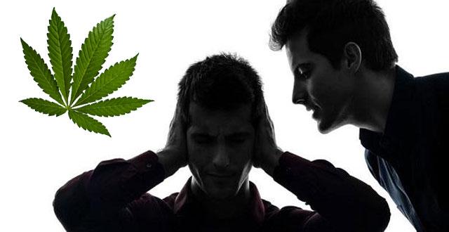 Compuesto de la marihuana, eficaz contra la esquizofrenia