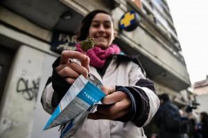Marihuana en Uruguay