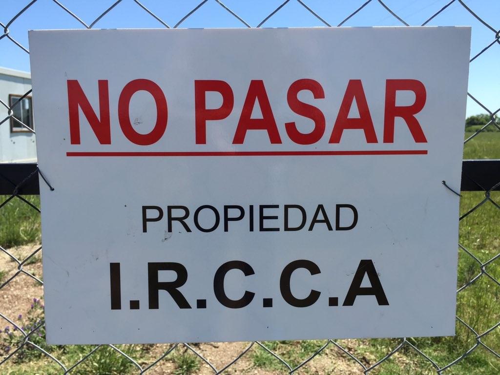 Cannabis en Uruguay: los problemas de suministro siguen obstaculizando el crecimiento del mercado