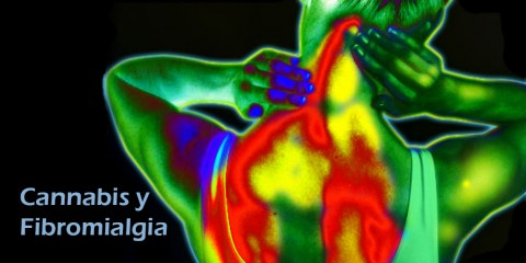 Fibromialgia-Cannabis-Consciente