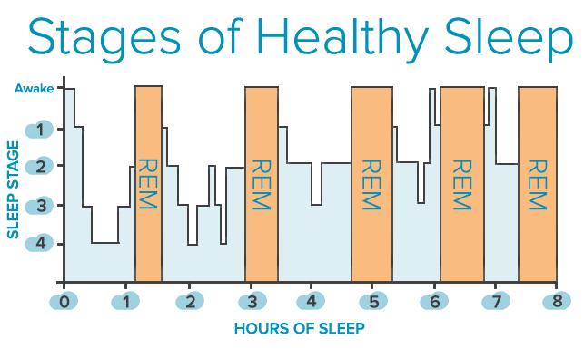 Stages-of-Sleep1